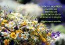 LŪSTĪGUS, SKANĪGUS, POZITĪVĀM EMOCIJĀM PIEPILDĪTUS LĪGO SVĒTKUS UN JĀŅUS!